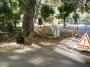 Seminario arboricoltura moderna a Lubjana seminario-arboricoltura-lubjana-012.jpg