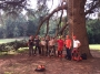 CORSO DI TREE CLIMBING - Operatori addetti ai sistemi di accesso e posizionamento mediante funi per lavori su alberi 14519929_1306197952758325_6711911374594958718_n.jpg