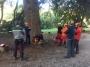 CORSO DI TREE CLIMBING - Operatori addetti ai sistemi di accesso e posizionamento mediante funi per lavori su alberi 14642153_1324577420920378_2697934946097351716_n.jpg