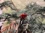CORSO DI TREE CLIMBING - Operatori addetti ai sistemi di accesso e posizionamento mediante funi per lavori su alberi corso-tree-climbing-salerno.jpg