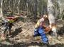 Utilizzo in sicurezza della motosega nelle operazioni di abbattimento ed allestimento (unità formativa F3) corso-forestale-f3-003.jpg